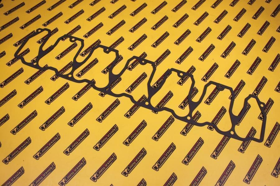 Фото №1 - Прокладка клапанной крышки Deutz/Дойц 1012/2012 6цил (04198969)
